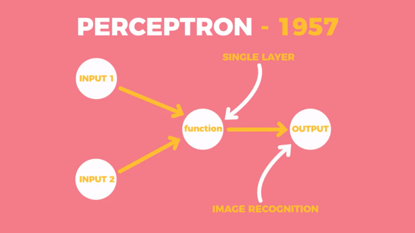 Diagram showing the layout of the perceptron